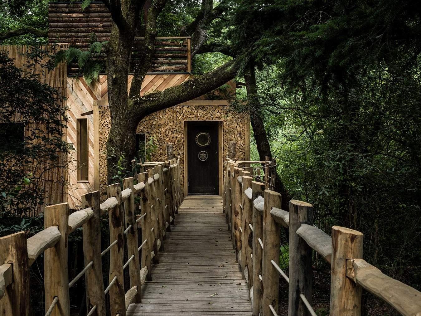 «Дом Дровосека на дереве» в Англии