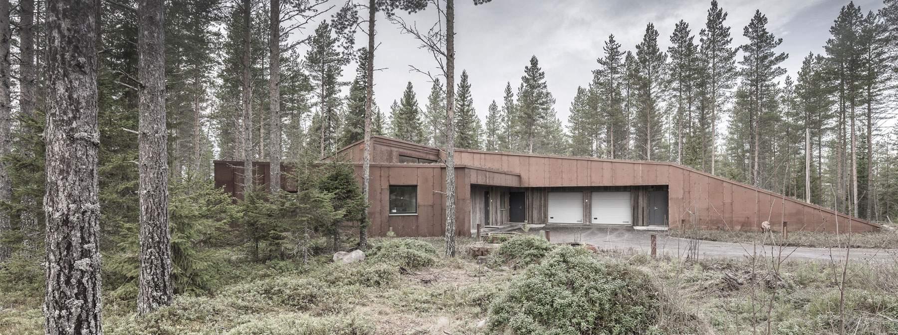 «Дом, пророщенный из леса», в Финляндии