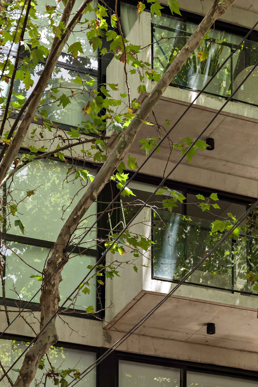 Жилой дом с универсальными интерьерами в Буэнос-Айресе, Аргентина