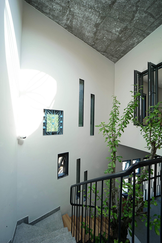 Дом, передающий любовь к ромашкам, Вьетнам