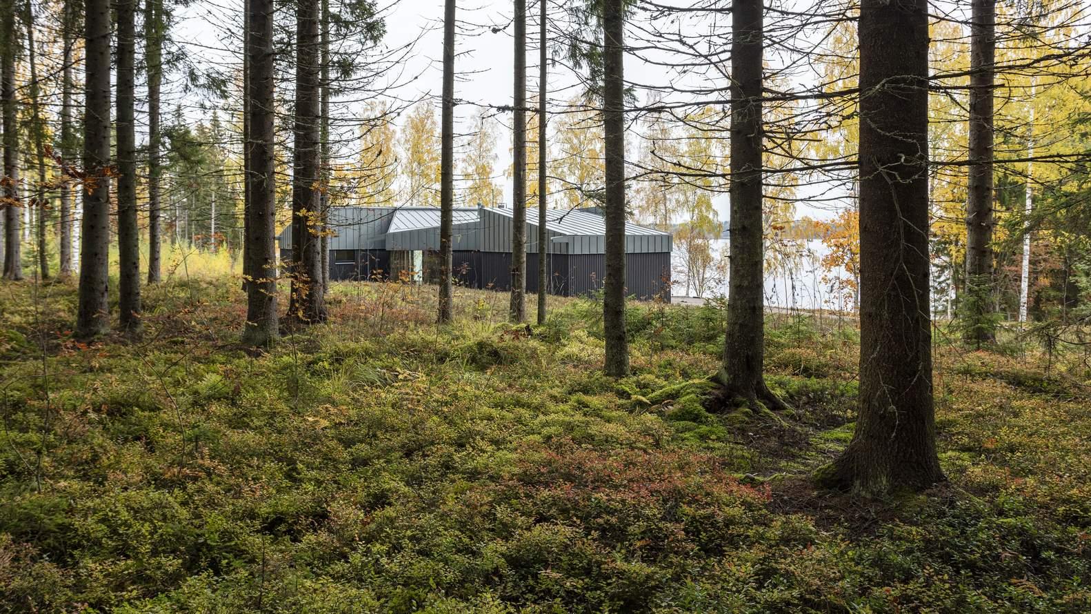 Яркий модернистский дом у лесного озера, Финляндия
