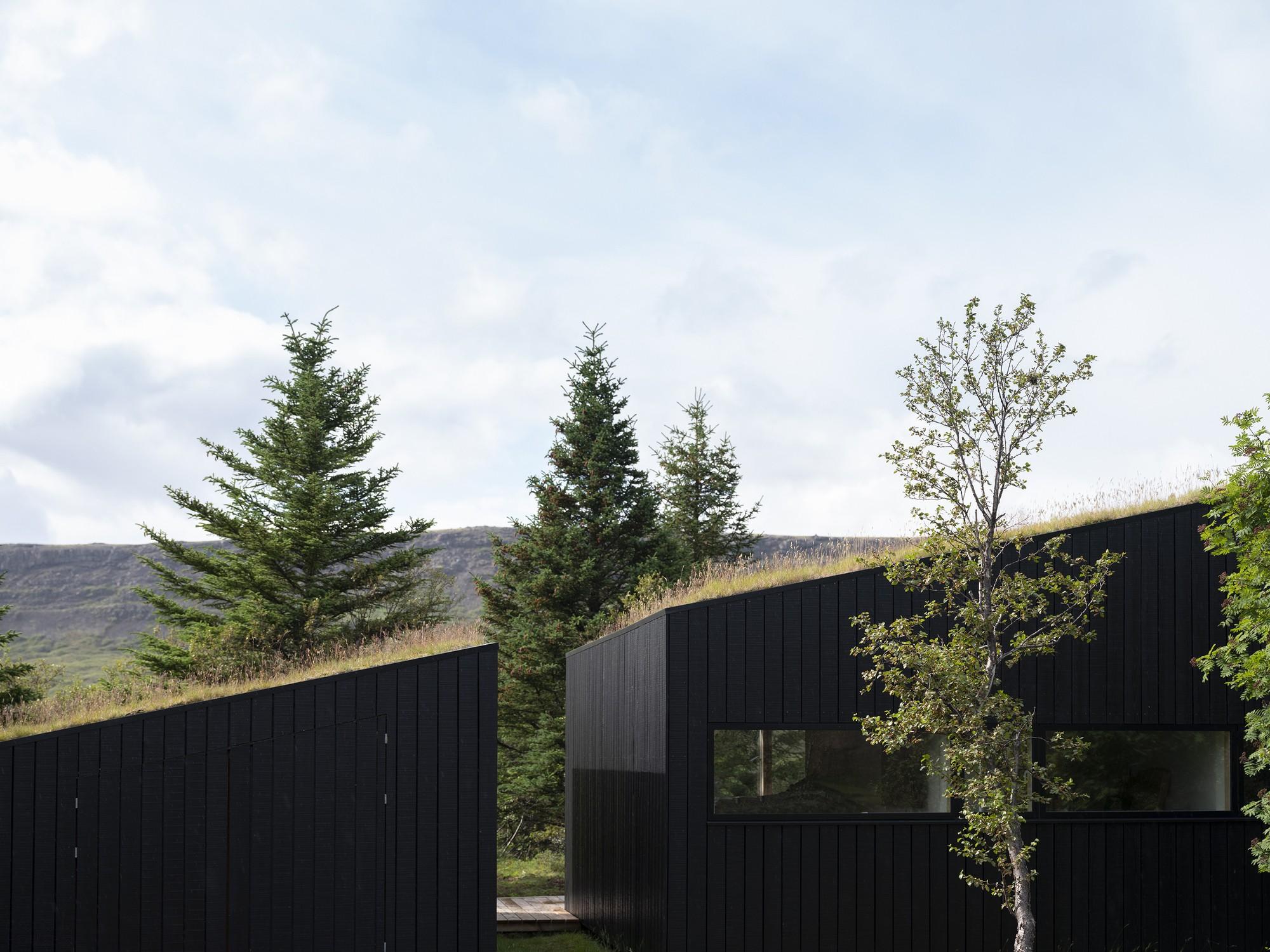 Оригинальная обитель для отдыха с «живой» зеленой крышей