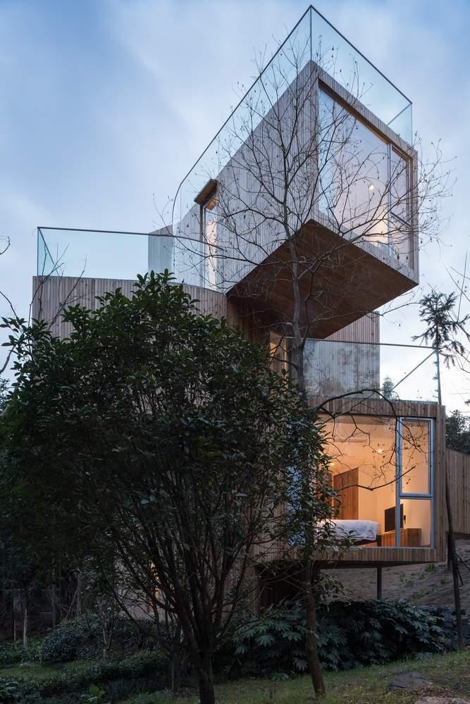Отель в виде раскидистого дерева в Китае