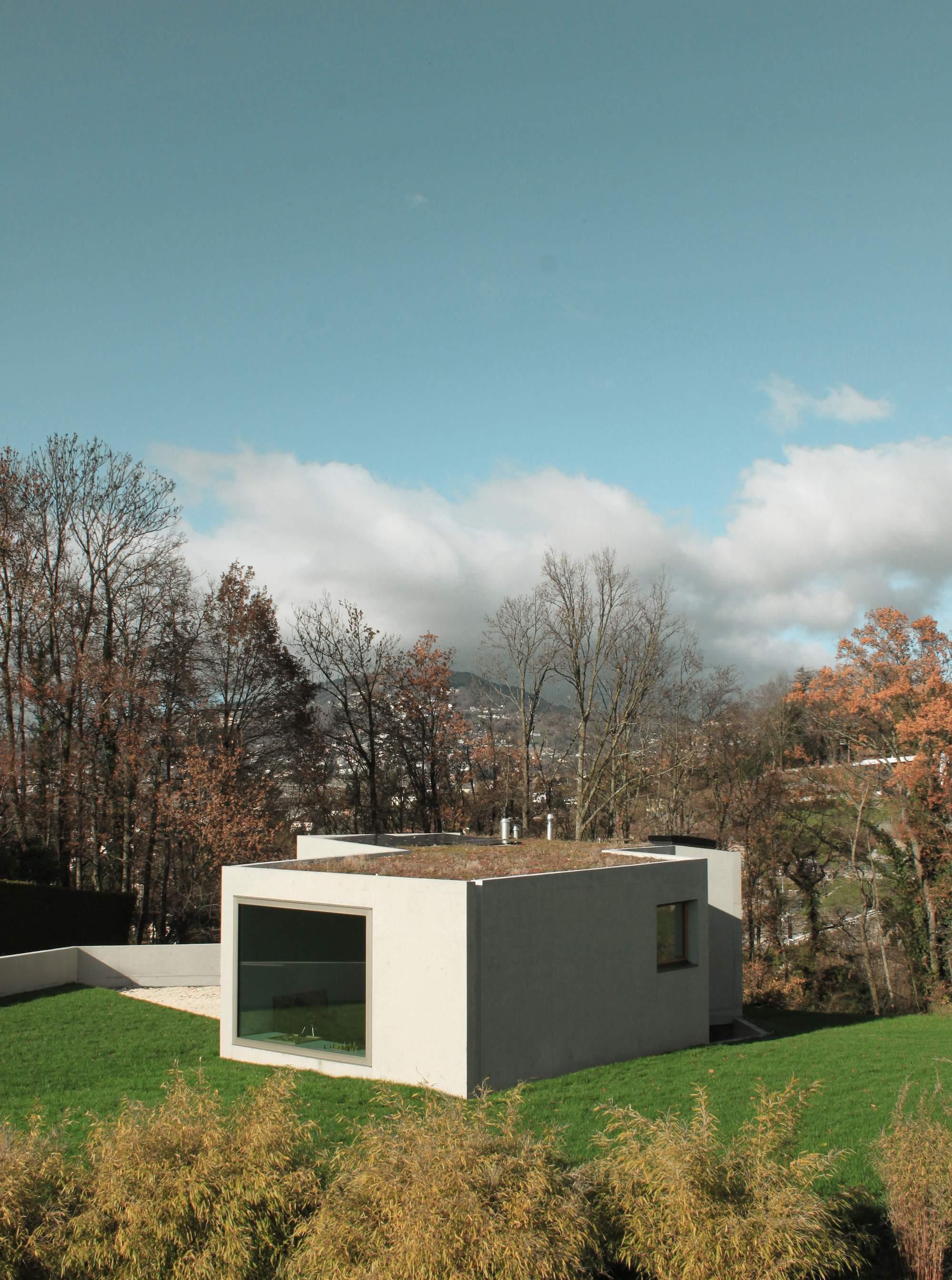 Скульптурная вилла на склонах виноградника, Швейцария