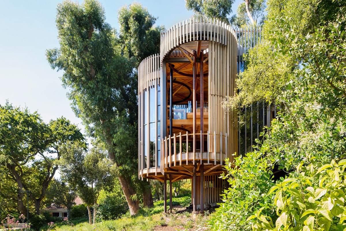 Дом-дерево в Южной Африке