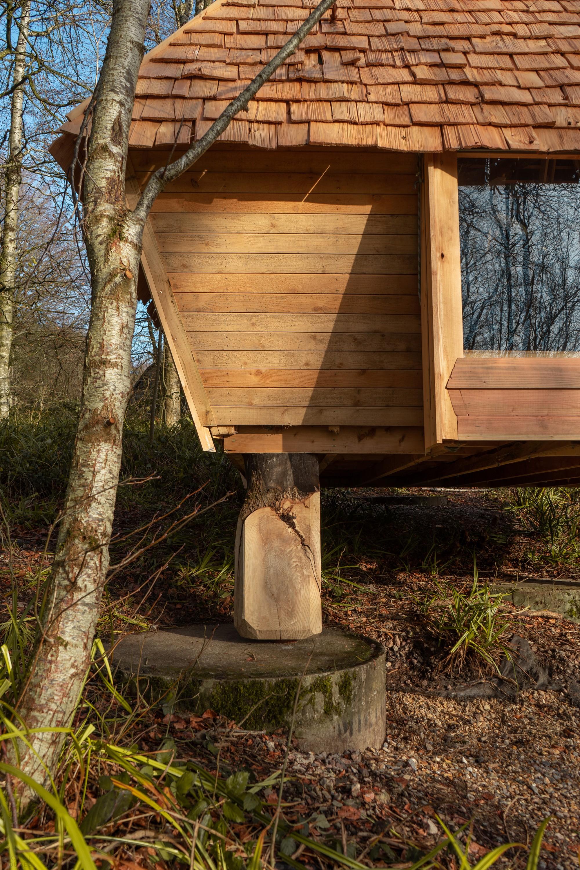 Небольшой домик в лесу