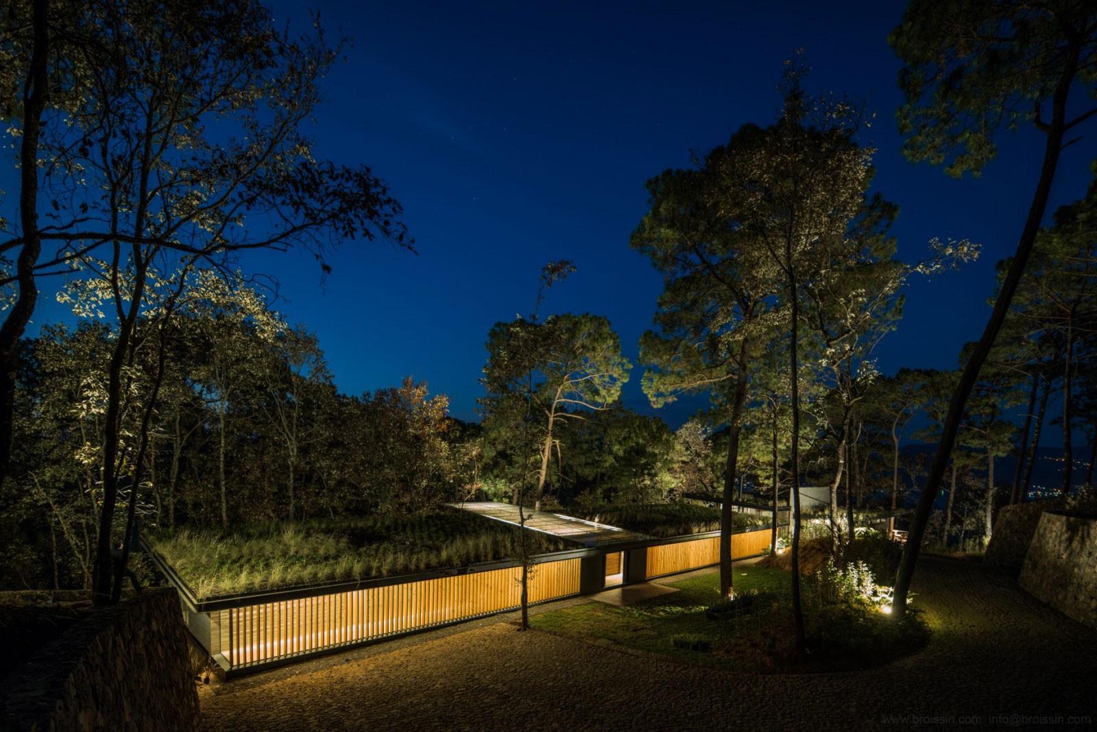 Семейный дом в лесу, Мексика