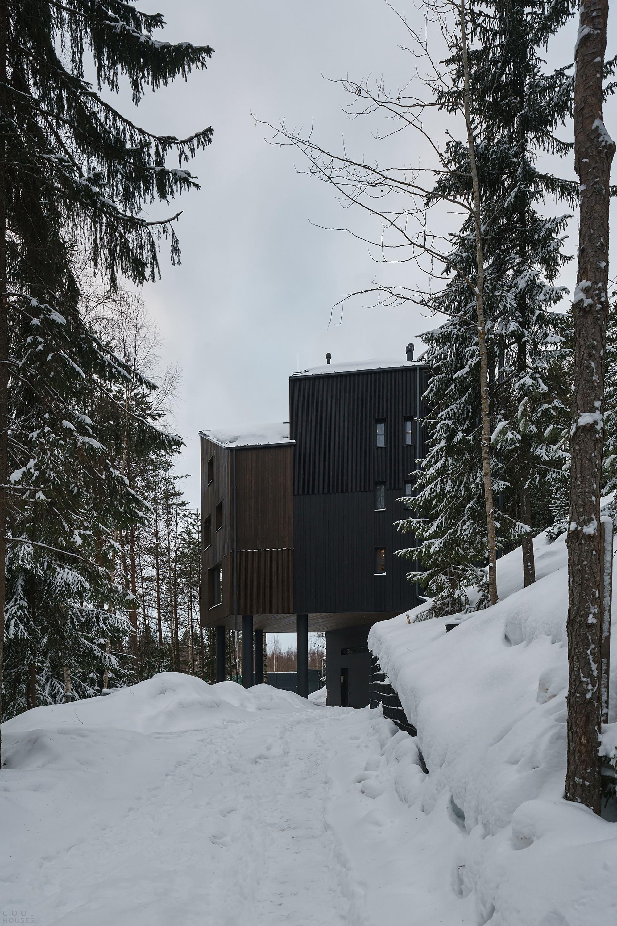 Каркасный дом с темными деревянными фасадами в лесном ландшафте