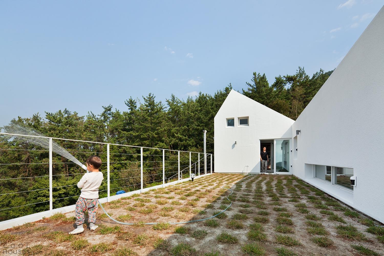 Бюджетный проект дома в Южной-Корее