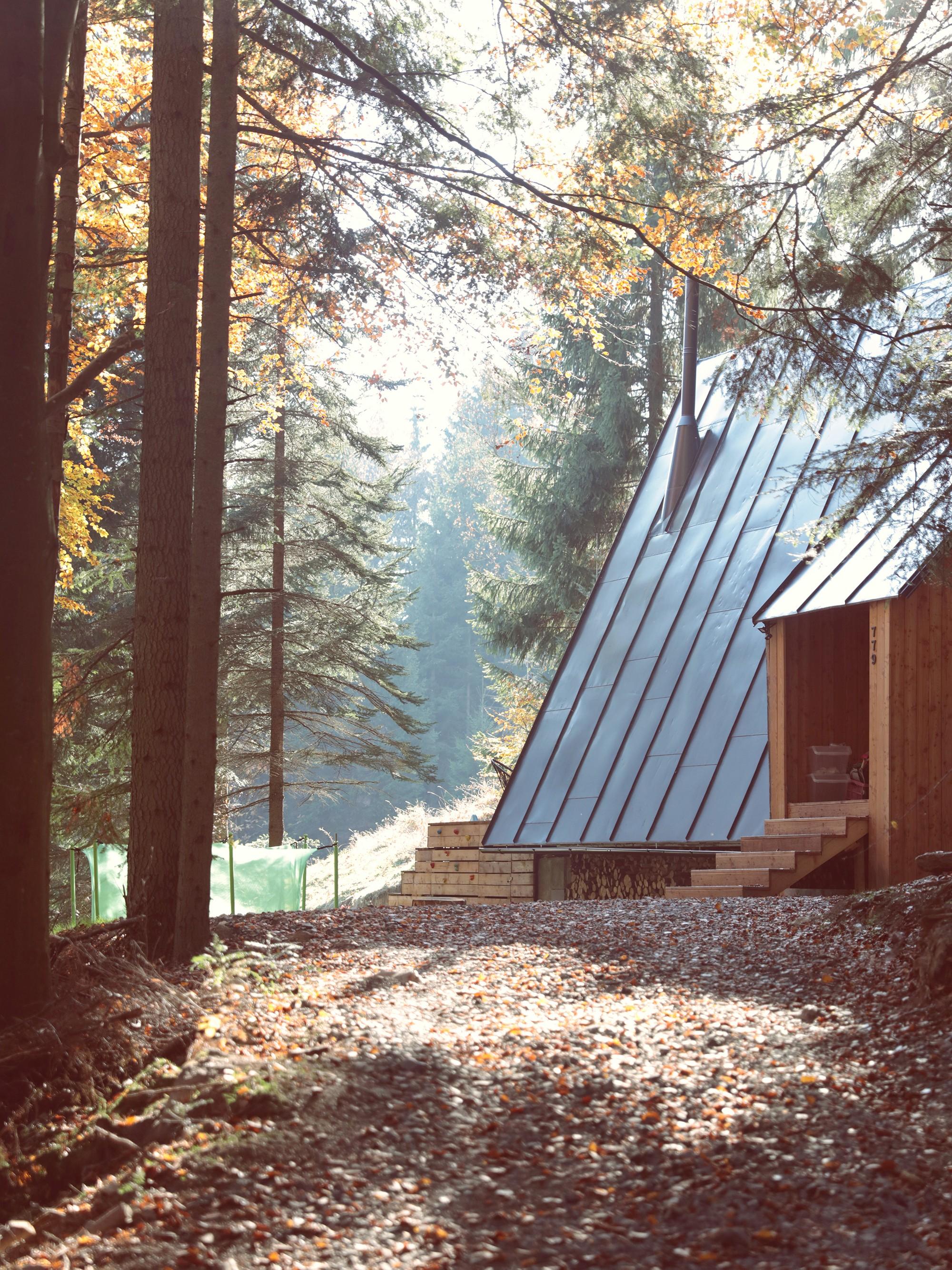 Деревянное шале с деревенским шармом на живописном лесном склоне