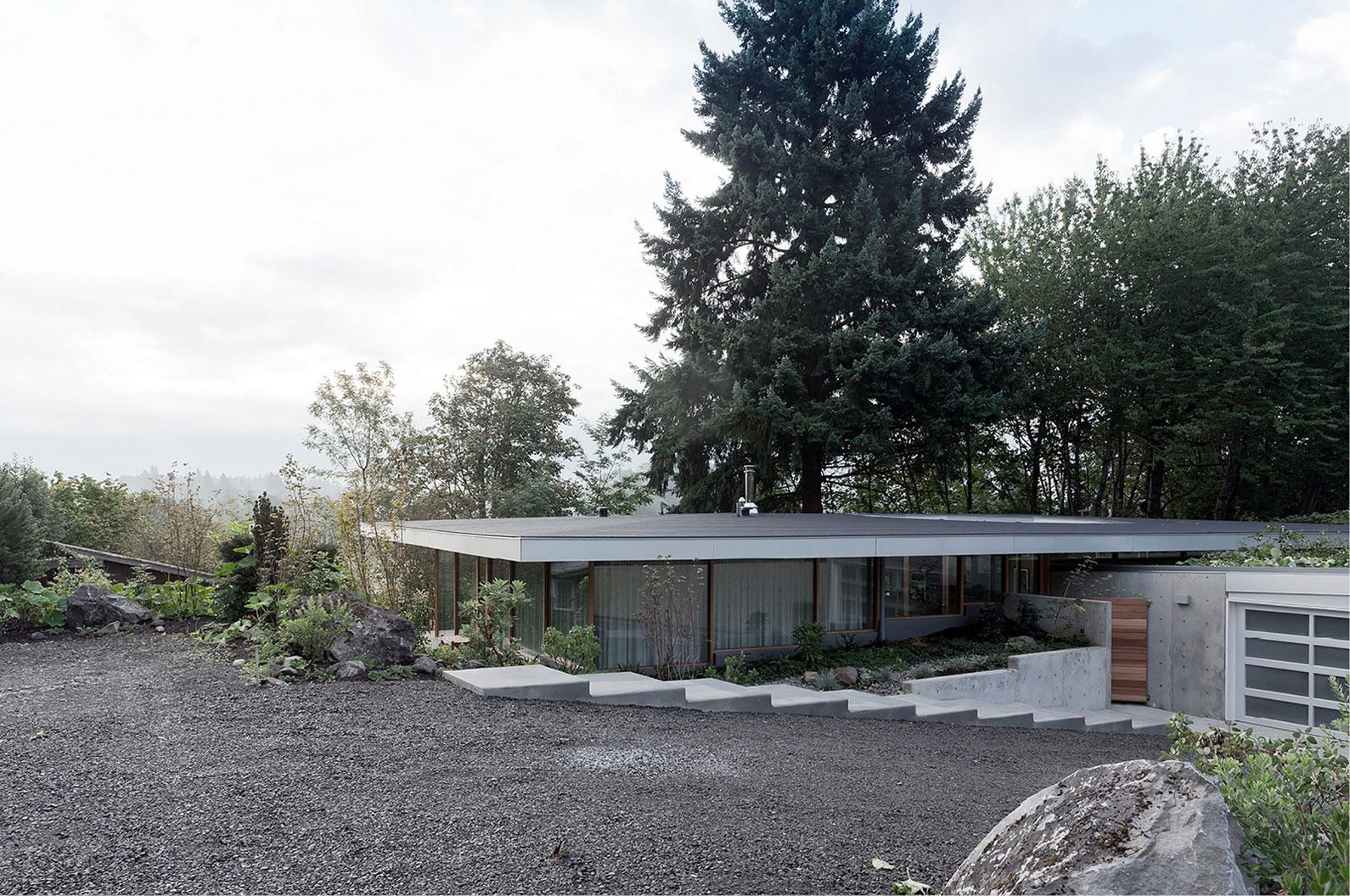 Загородный дом на вершине лесистого холма