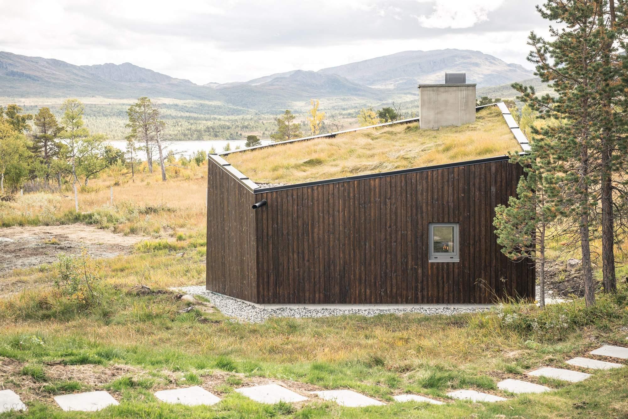Современная версия навеса в Норвегии